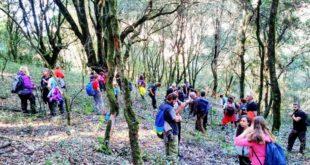 ΕΟΣ Καλαμάτας: Πεζοπορία στο δάσος της Φολόης την Κυριακή 25/11/2018