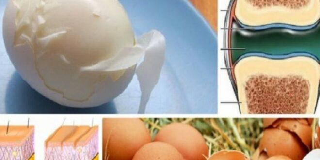 Τα Αυγά Αυξάνουν το Κολλαγόνο στον Οργανισμό χαρίζοντας Υγεία στο Δέρμα & τις Αρθρώσεις! Διαβάστε Πώς