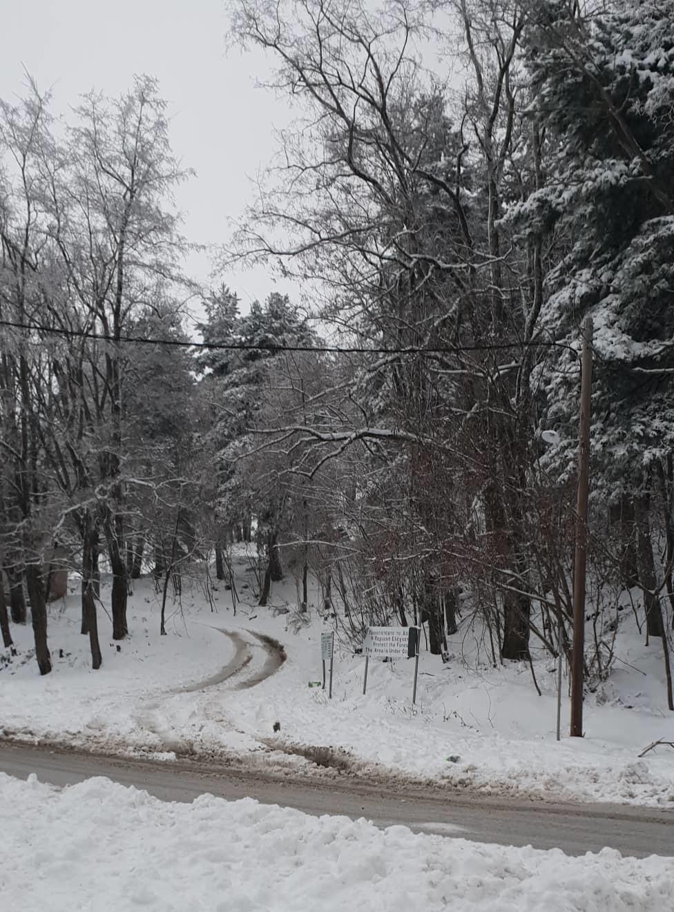 Χιόνια και στην Καλαμάτα 2
