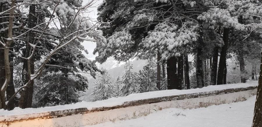 Χιόνια και στην Καλαμάτα 4