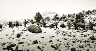 Ε.Ο.Σ. Καλαμάτας Ανάβαση στο Αρτεμίσιο (κορυφή Μαλεβός 1.771μ.)