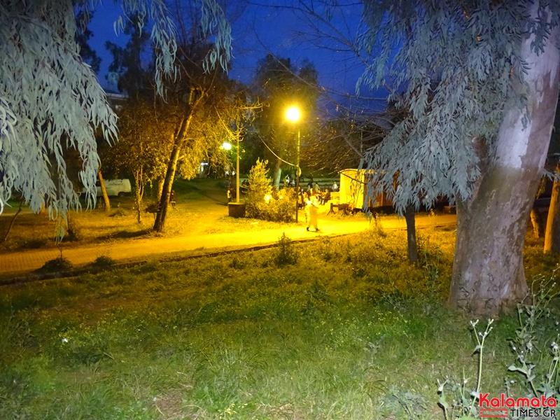 Το πάρκο της Καλαμάτας πλημμύρισε από καρναβαλιστές 14