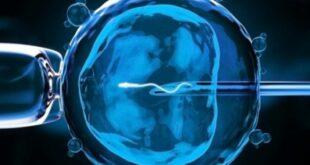 Νέα επιστημονικά δεδομένα για την εξωσωματική γονιμοποίηση