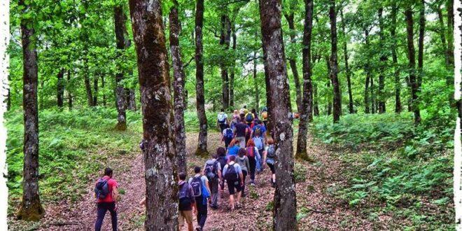 Μια εντυπωσιακή εξόρμηση διοργανώνει ο Σύλλογος Πεζοπόρων - Ορειβατών Καλαμάτας ''Ο Ευκλής'' στην Ηλεία