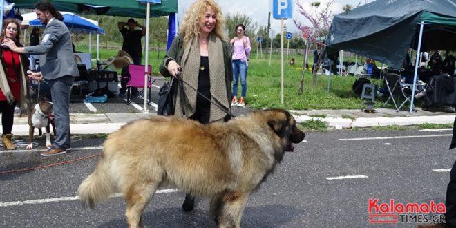 Έκθεση σκύλων Hppy dog kalamata