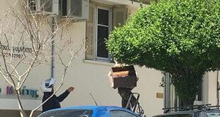 Καλαμάτα: Όταν η ΔΙΑΣ βοήθησε στη… σύλληψη «αδέσποτου» μελισσιού