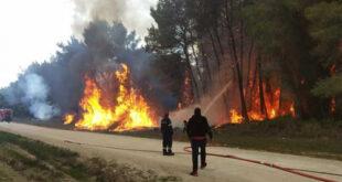 486.000 στους Δήμους της Μεσσηνίας για την κάλυψη δράσεων πυροπροστασίας