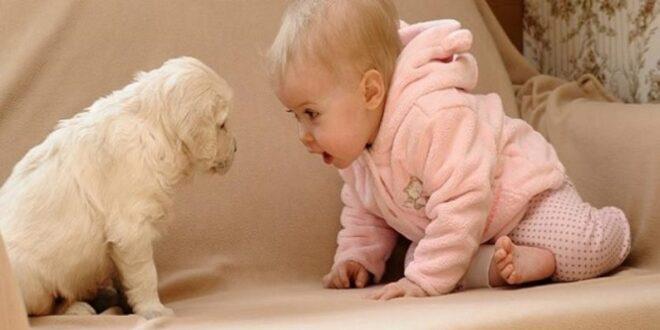 Γιατί γίνονται καλύτερα τα παιδιά που αγαπούν τα ζώα