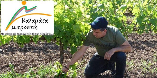 Βασίλης Κοσμόπουλος «Λαϊκή αγορά στο λιμάνι» και άλλες δράσεις για τους αγρότες