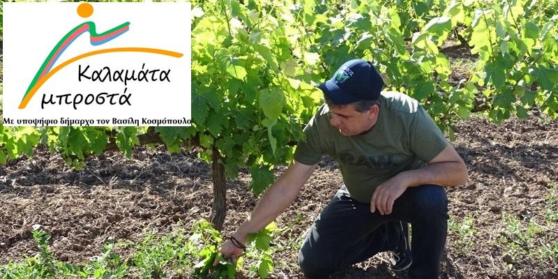 """Βασίλης Κοσμόπουλος """"Λαϊκή αγορά στο λιμάνι"""" και άλλες δράσεις για τους αγρότες 6"""