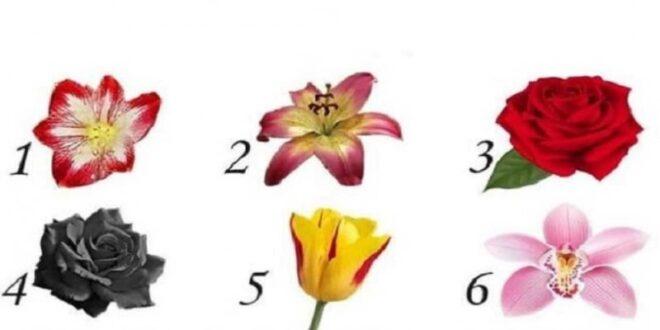 Διάλεξε ένα λουλούδι και μάθε το μυστικό που κρύβει για τον εαυτό σου που δεν γνωρίζεις!