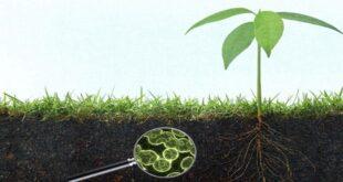 Ενημέρωση για τις πολλαπλές εφαρμογές και τα οφέλη των Ενεργών Μικροοργανισμών