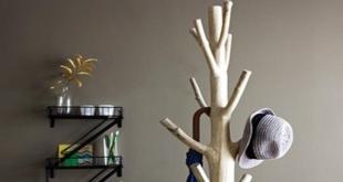 Καλόγερος ρούχων από κλαδί δέντρου