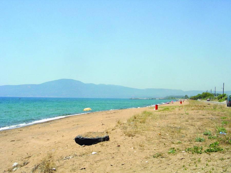 Παγκόσμια Ημέρα Περιβάλλοντος - εθελοντικός καθαρισμός της δυτικής παραλίας Καλαμάτας 6