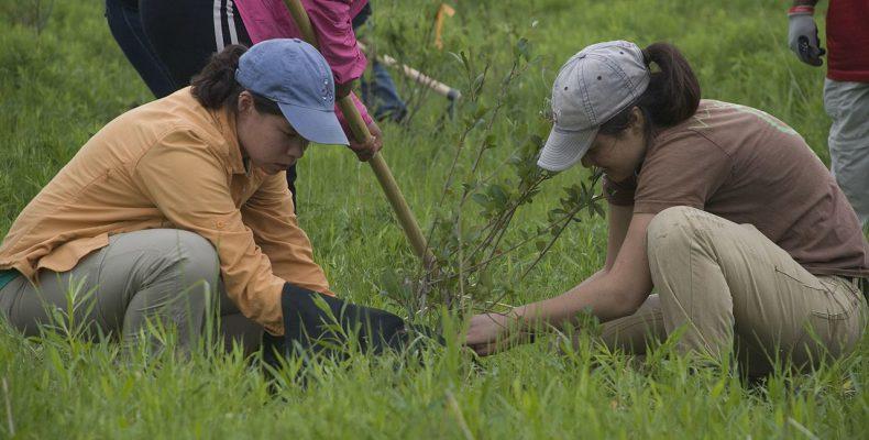 Φιλιππίνες: Αν δεν φυτέψεις 10 δέντρα… δεν παίρνεις απολυτήριο! 1
