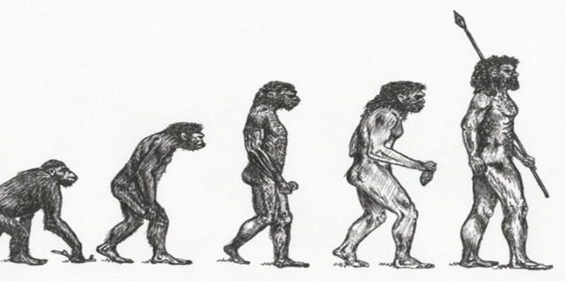 Βρέθηκε στη Μάνη το αρχαιότερο δείγμα Homo Sapiens 1