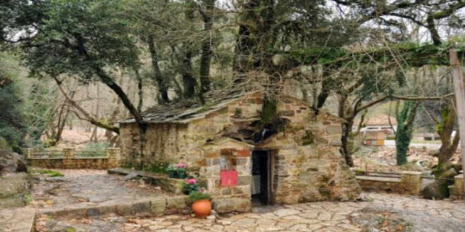 Η εκκλησιά που στη στέγη της φύτρωσαν 17 δέντρα είναι προορισμός από μόνη της! (video)