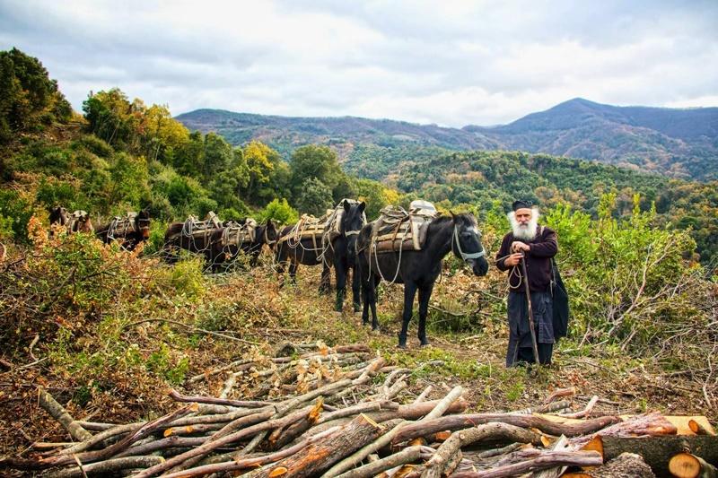 Προσκυνηματική αποστολή στο Άγιον Όρος τα μέλη του Ευκλή. 2