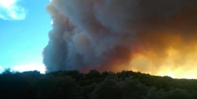 Πυρκαγιές στα Τσουκαλέικα και στο Ζευγολατιό Μεσσηνίας 1