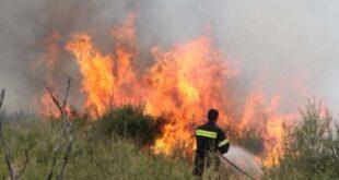 φωτιές στη Μεσσηνία