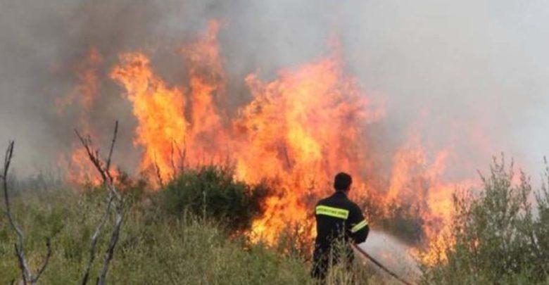Σε εξέλιξη δύο φωτιές στη Μεσσηνία 1
