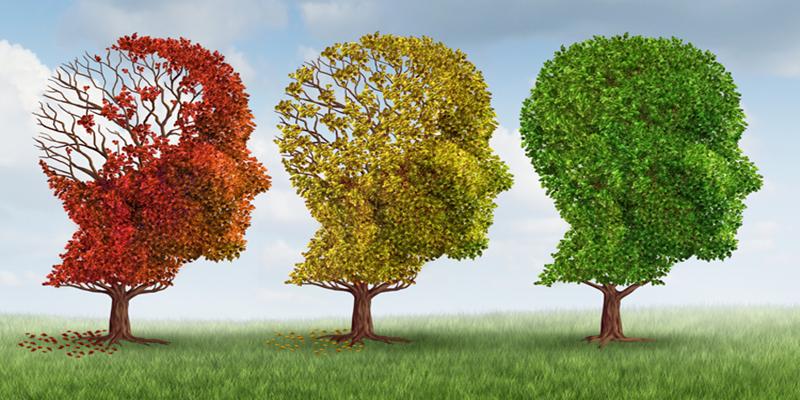 Δομή για ασθενείς με Αλτσχάιμερ δημιουργείται στην Καλαμάτα 4