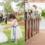 3χρονο κοριτσάκι που νίκησε τον καρκίνο έγινε παρανυφάκι στον γάμο της δότριας μυελού των οστών της
