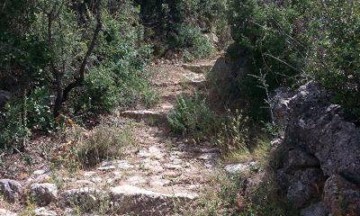 Ευκλής Καλαμάτας: Εξόρμηση στο Όρος Καλάθι 5