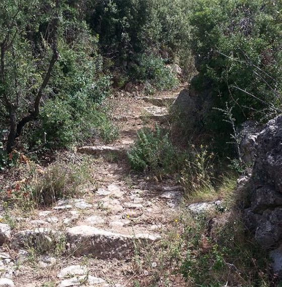 Ευκλής Καλαμάτας: Εξόρμηση στο Όρος Καλάθι 2