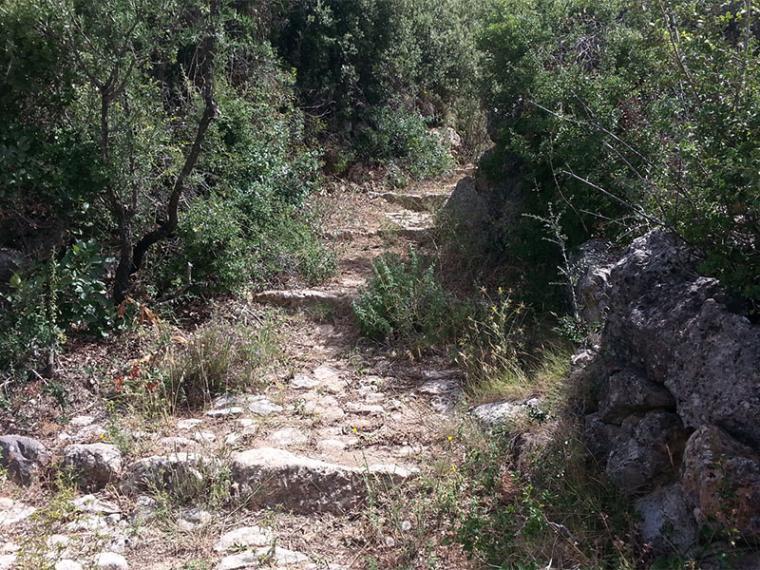 Ευκλής Καλαμάτας: Εξόρμηση στο Όρος Καλάθι 13