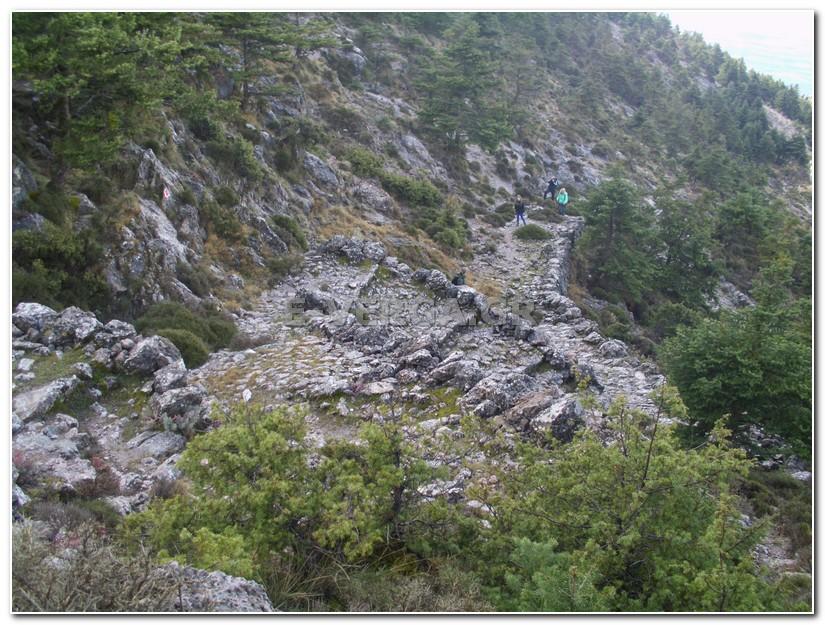 Ευκλής Καλαμάτας: Εξόρμηση στο Όρος Καλάθι 16