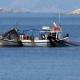 Πρόσθετα μέτρα στήριξης σε αλιείς και υδατοκαλλιέργεια 11