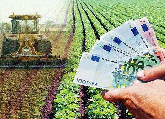ΑΣ Χανδρινού: Κίνδυνος απώλειας επιδοτήσεων και ταλαιπωρία για χιλιάδες αγρότες το ΟΣΔΕ 34