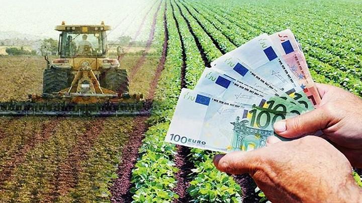 ΑΣ Χανδρινού: Κίνδυνος απώλειας επιδοτήσεων και ταλαιπωρία για χιλιάδες αγρότες το ΟΣΔΕ 12