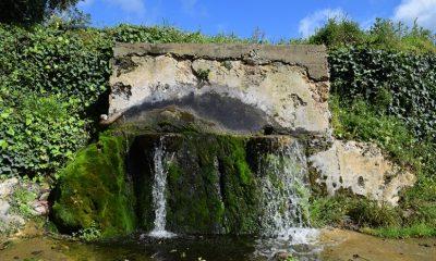 Επισκέψιμο το ιστορικό Μονοπάτι παλιών Νερόμυλων στους Κάτω Αμπελόκηπους Μεσσηνίας 4