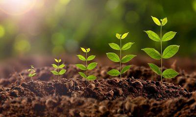 Πανελλήνια Ένωση Βιοεπιστημόνων: Νομοσχέδιο «Εκσυγχρονισμός Περιβαλλοντικής Νομοθεσίας» 5