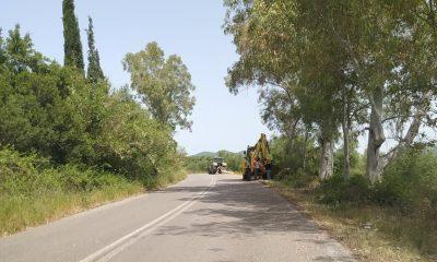 ΠΕ Μεσσηνίας:  Συντήρηση και καθαρισμοί οδών για λόγους αντιπυρικής προστασίας 6