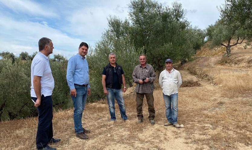 Ο Αθανασόπουλος σε χωριά της Μεσσήνης για τις επιπτώσεις στην φετινή παραγωγή 1