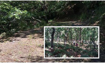 Στο ορεινό χωριό Σελλά Τριφυλίας εξορμούν οι φυσιολάτρες του Ευκλή 14