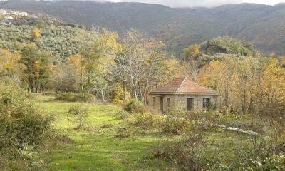 Μιχάλης Αντωνόπουλος: Ανάπτυξη βοτανικού πάρκου στο αγροκήπιο Ταϋγέτου 9