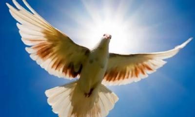 Ευχές του Παναγιώτη Νίκα για το τριήμερο του Αγίου Πνεύματος 6