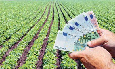 Έρχεται έκτακτη οικονομική ενίσχυση έως 7.000 ευρώ για κάθε αγρότη 2
