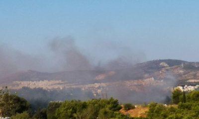 Μεσσηνία: Φωτιά στο Πεταλίδι, προληπτική εκκένωση του οικισμού Μαθία 2
