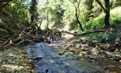 Δροσερή εξόρμηση των φυσιολατρών του Ευκλή Καλαμάτας στο Φαράγγι Αντρωνίου στην ορεινή Ηλεία 5