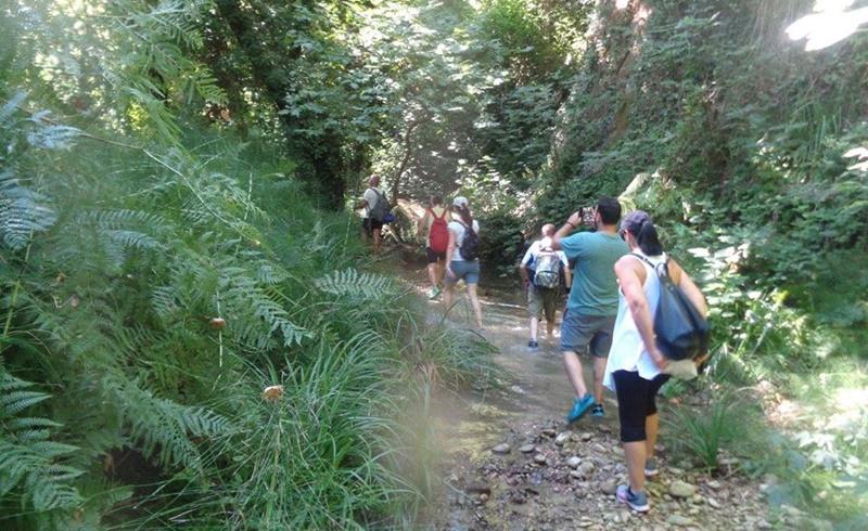 Οι φυσιολάτρες του Ευκλή Καλαμάτας, εξερευνούν στο Φαράγγι Κάκοβος στην Ηλεία 9