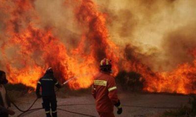 Πυρκαγιά στην Ανατολική Μάνη: Συνεχείς αναζωπυρώσεις λόγω τον ισχυρών ανέμων –  Ενεργοποιήθηκε το Copernicus 8