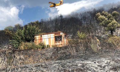 Υπό έλεγχο τέθηκε η πυρκαγιά στο Χανδρινού Μεσσηνίας 12
