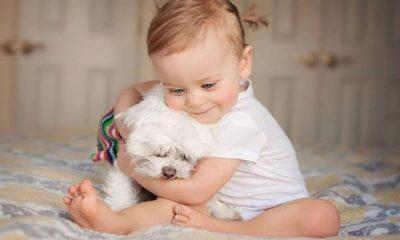 Παιδιά και ζώα: Η πιο τρυφερή σχέση! 7