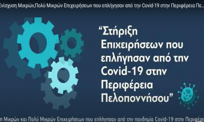 Ενίσχυση Μικρών και Πολύ Μικρών Επιχειρήσεων που επλήγησαν από την πανδημία Covid-19 στην Περιφέρεια Πελοποννήσου 11
