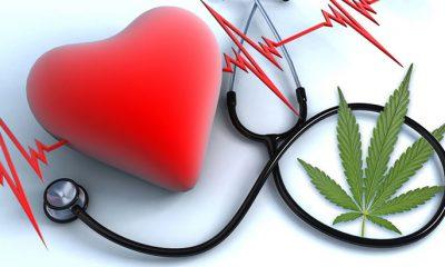 bd-kardia / CBD και καρδιά